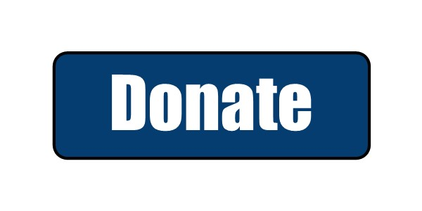 The gallery for --> Blue Donate Button Blue Donate Now Button
