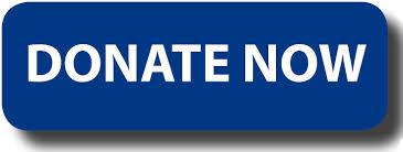 donate now 2
